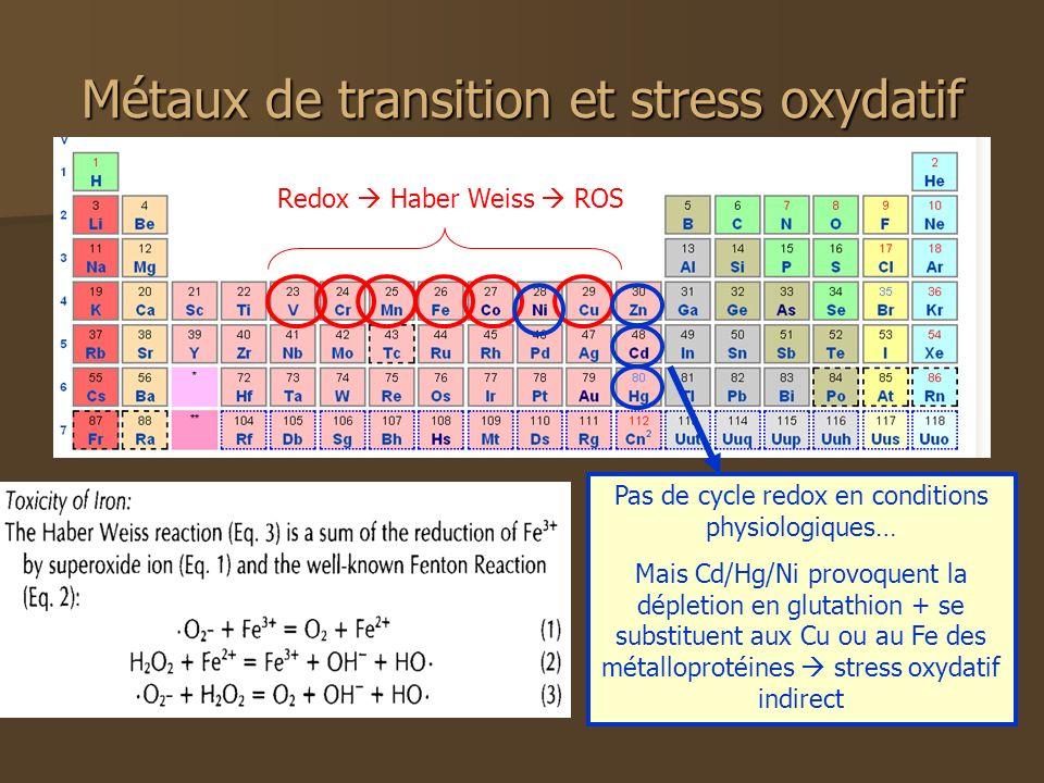 Métaux de transition et stress oxydatif