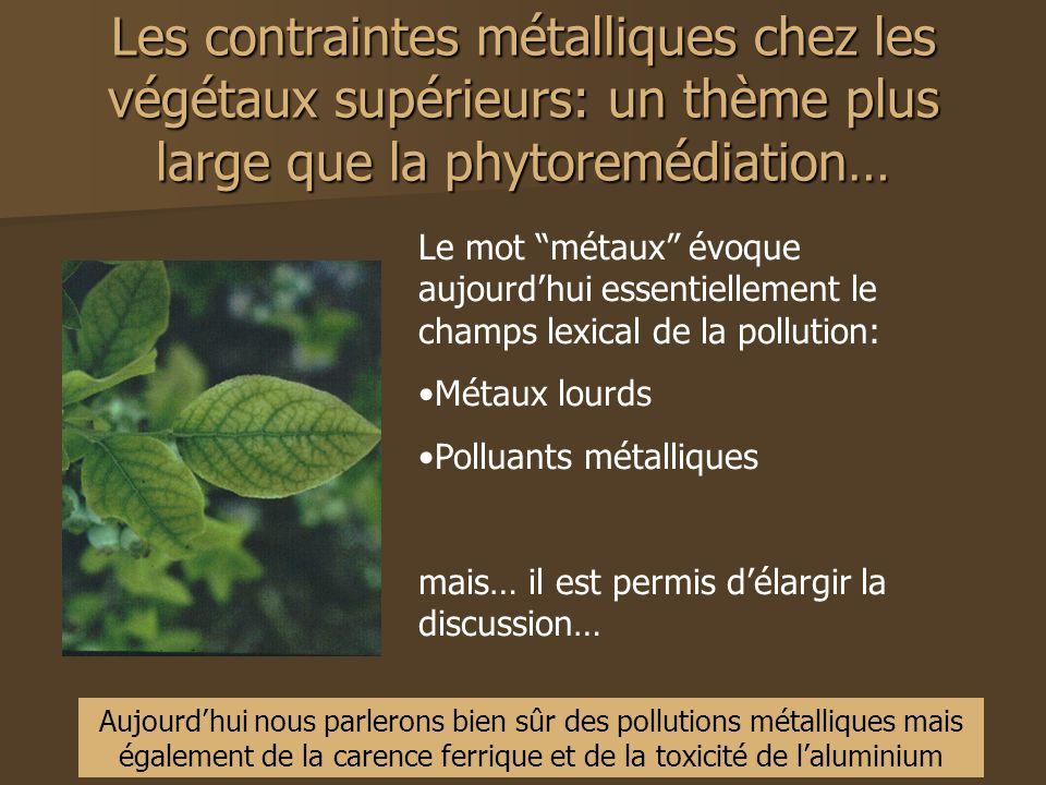 Les contraintes métalliques chez les végétaux supérieurs: un thème plus large que la phytoremédiation…
