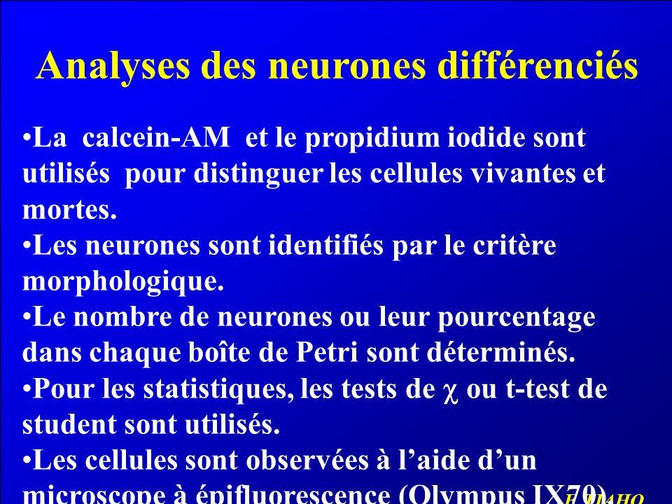 Propriétés des neurones différenciés Advantages du modèle