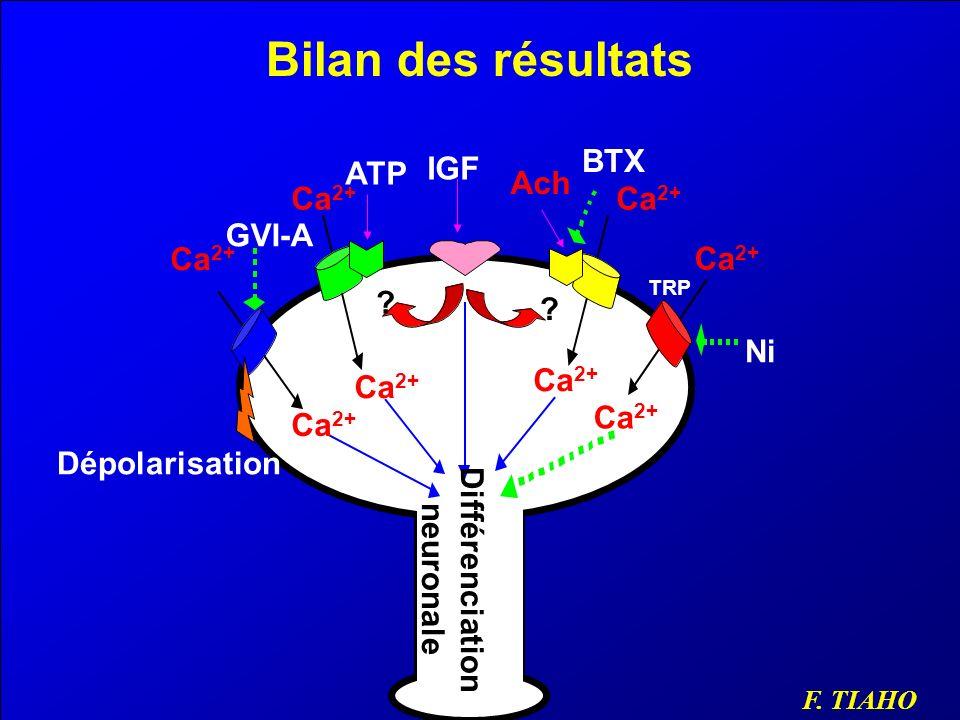 Bilan des résultats BTX ATP IGF Ach Ca2+ Ca2+ GVI-A Ca2+ Ca2+ Ni