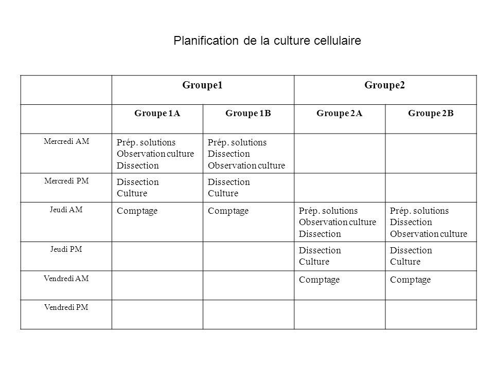 Planification de la culture cellulaire