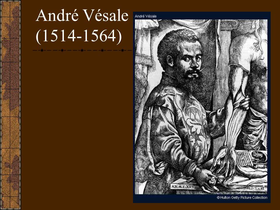 André Vésale (1514-1564)