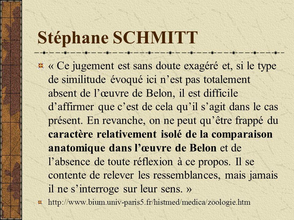 Stéphane SCHMITT