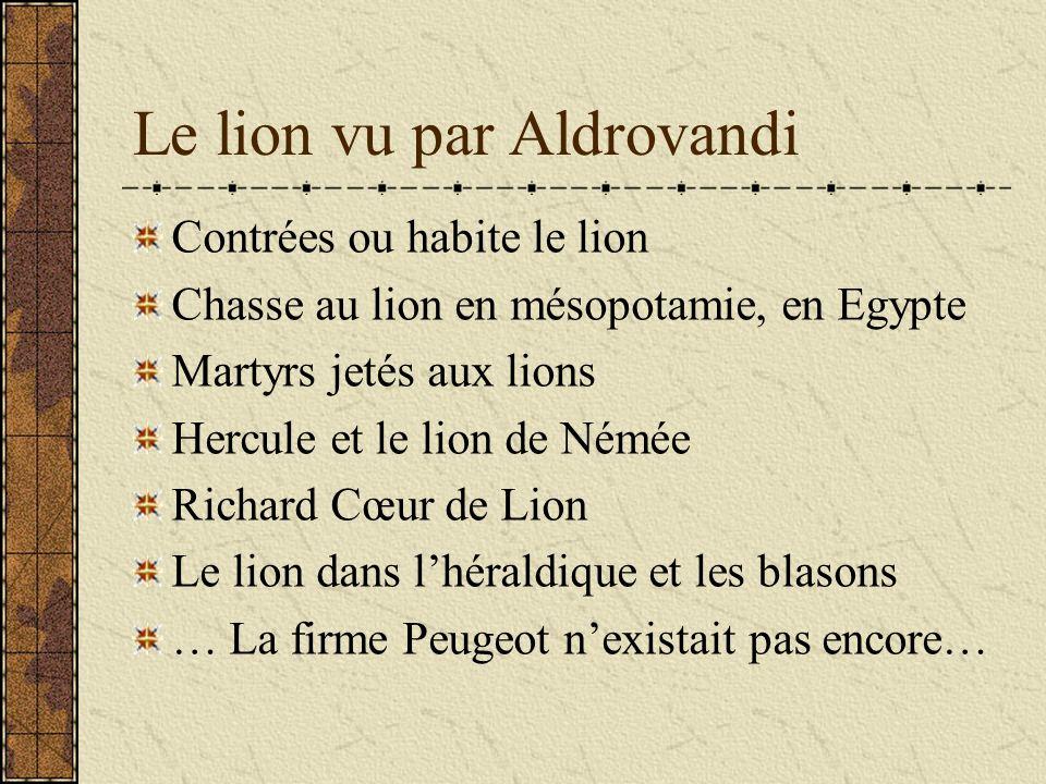 Le lion vu par Aldrovandi
