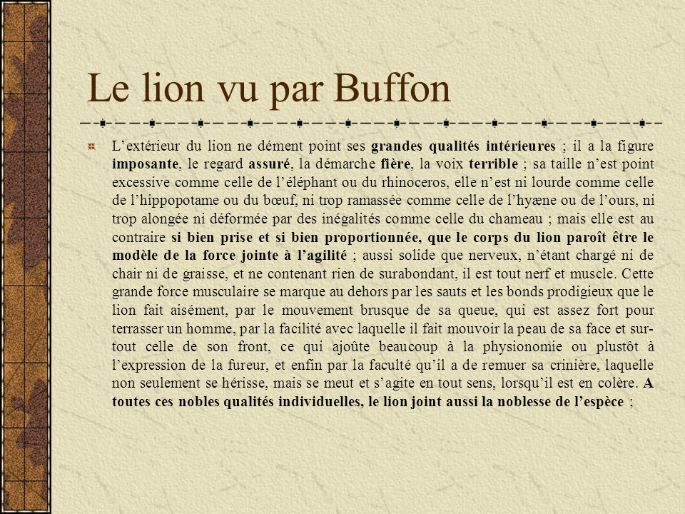 Le lion vu par Buffon