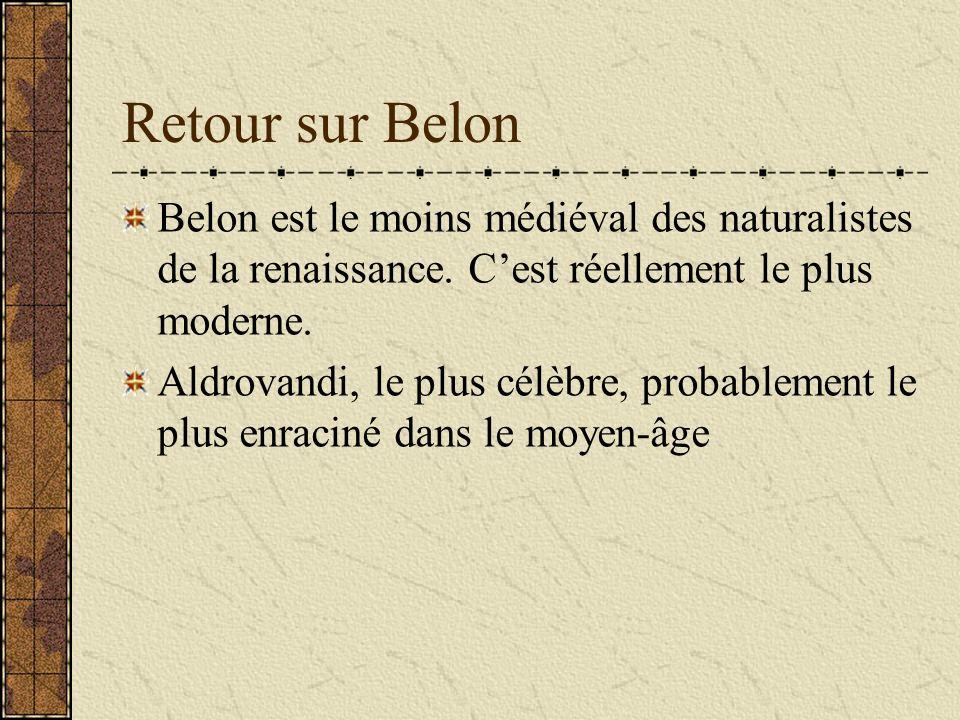 Retour sur Belon Belon est le moins médiéval des naturalistes de la renaissance. C'est réellement le plus moderne.