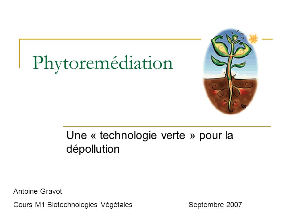 Une « technologie verte » pour la dépollution