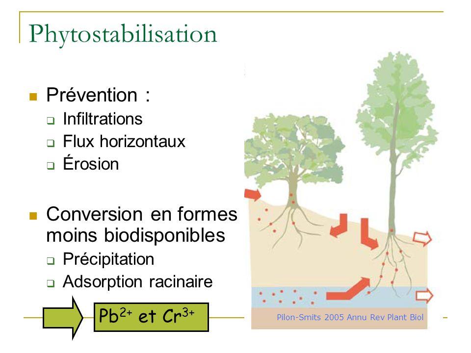Pilon-Smits 2005 Annu Rev Plant Biol
