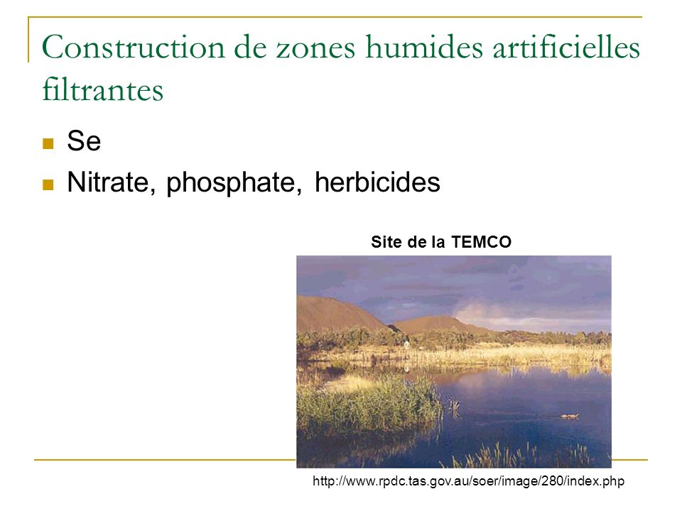 Construction de zones humides artificielles filtrantes