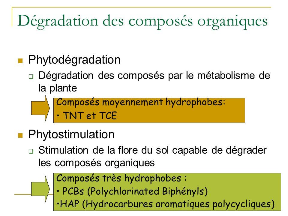 Dégradation des composés organiques