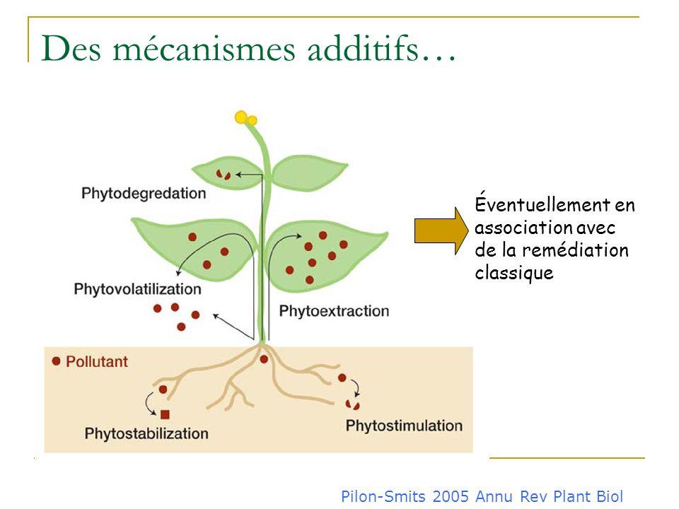 Des mécanismes additifs…