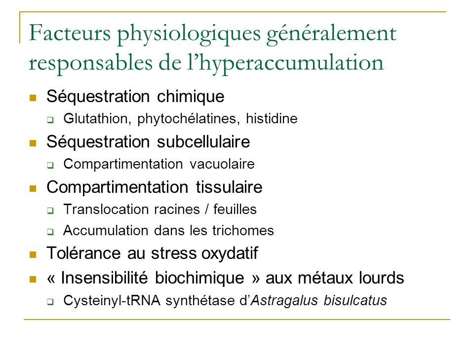 Facteurs physiologiques généralement responsables de l'hyperaccumulation