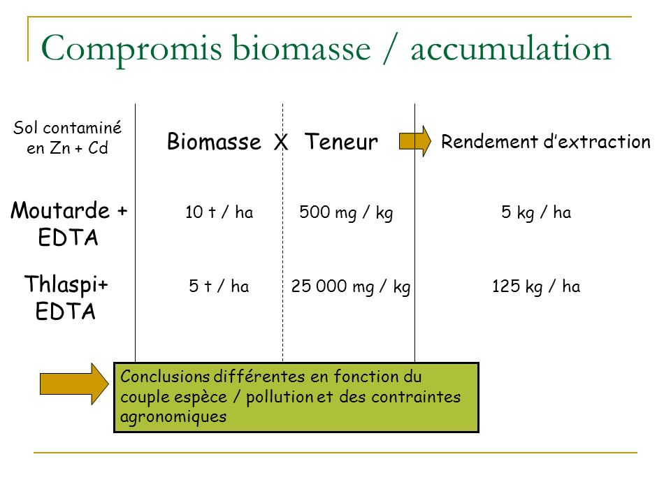 Compromis biomasse / accumulation
