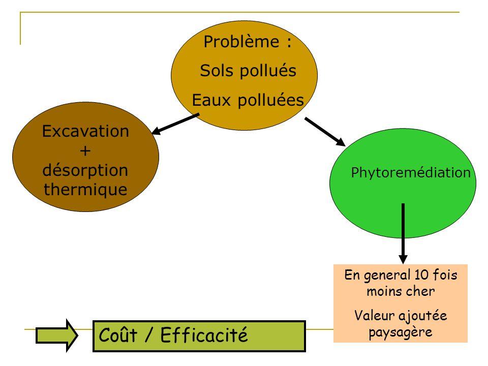 Coût / Efficacité Problème : Sols pollués Eaux polluées