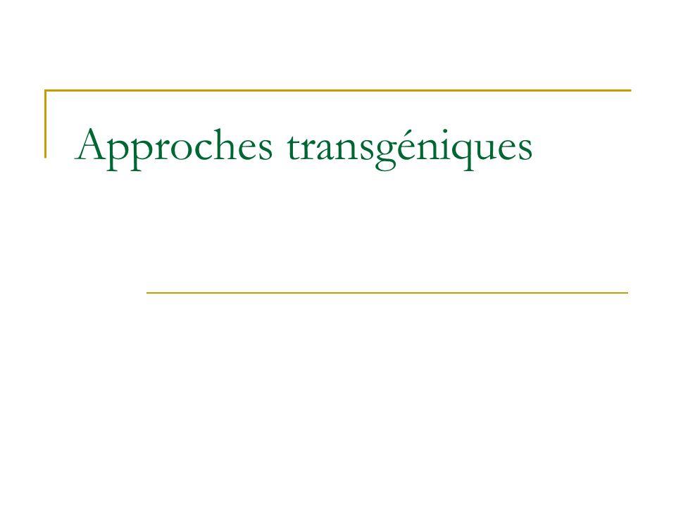 Approches transgéniques
