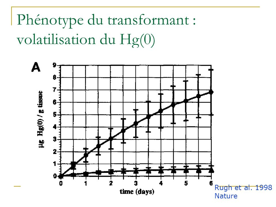 Phénotype du transformant : volatilisation du Hg(0)