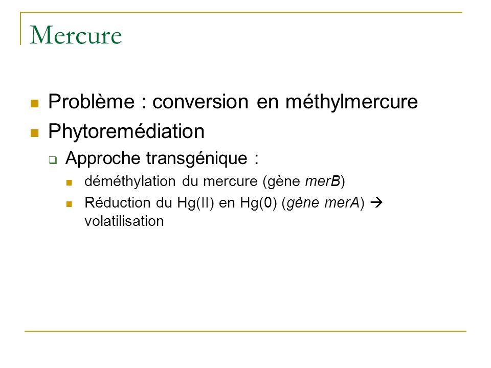 Mercure Problème : conversion en méthylmercure Phytoremédiation