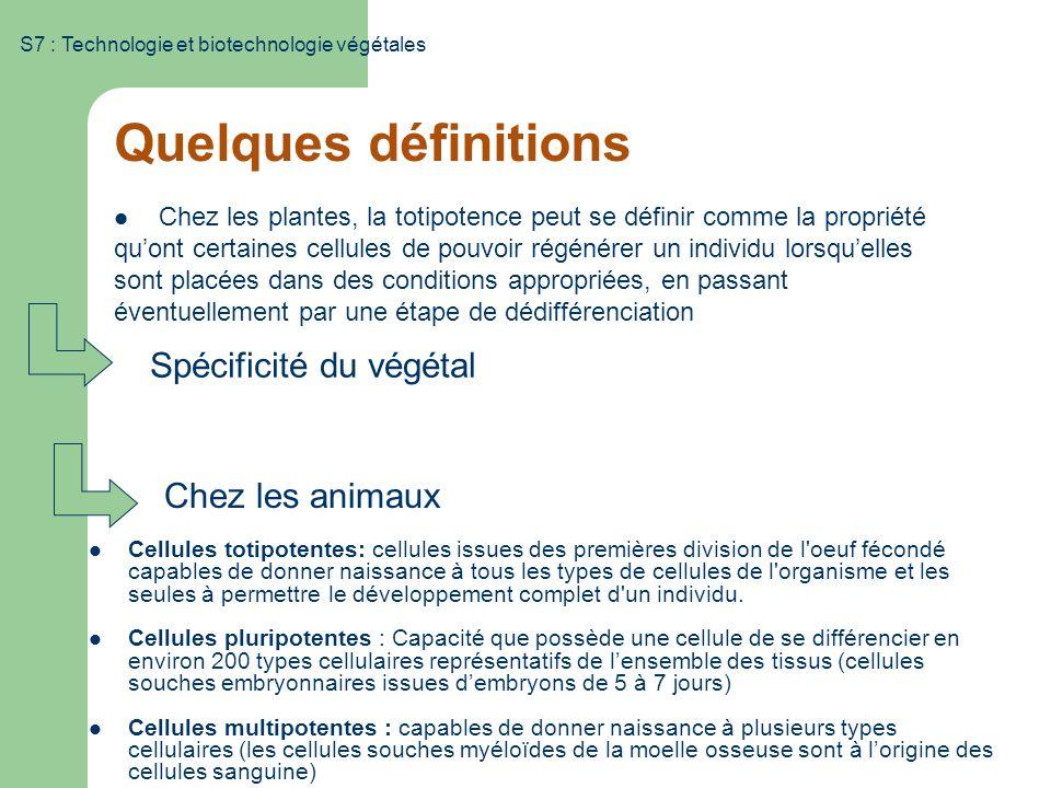 Quelques définitions Spécificité du végétal Chez les animaux