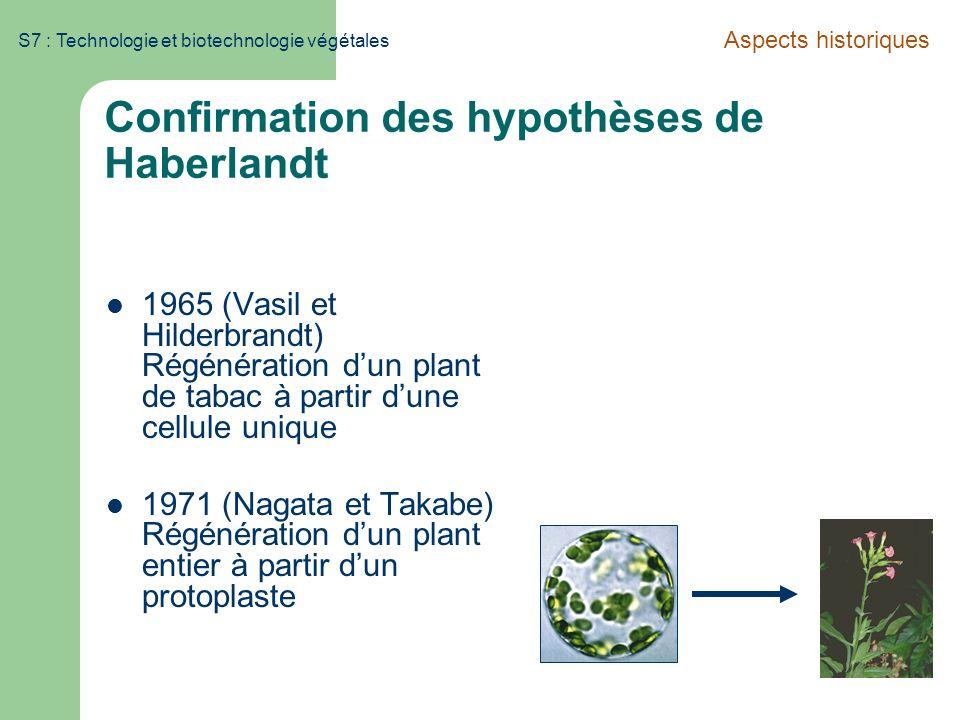 Confirmation des hypothèses de Haberlandt
