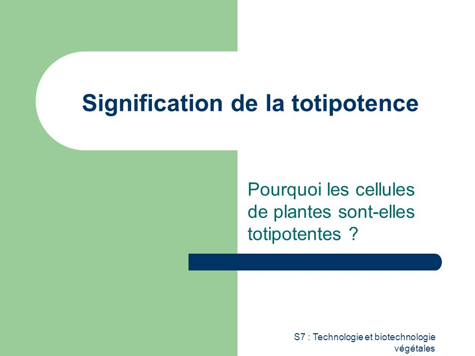 Signification de la totipotence