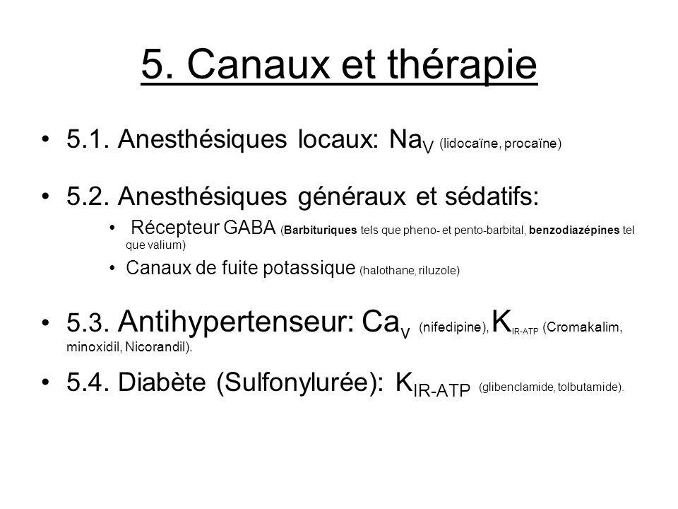 5. Canaux et thérapie 5.1. Anesthésiques locaux: NaV (lidocaïne, procaïne) 5.2. Anesthésiques généraux et sédatifs: