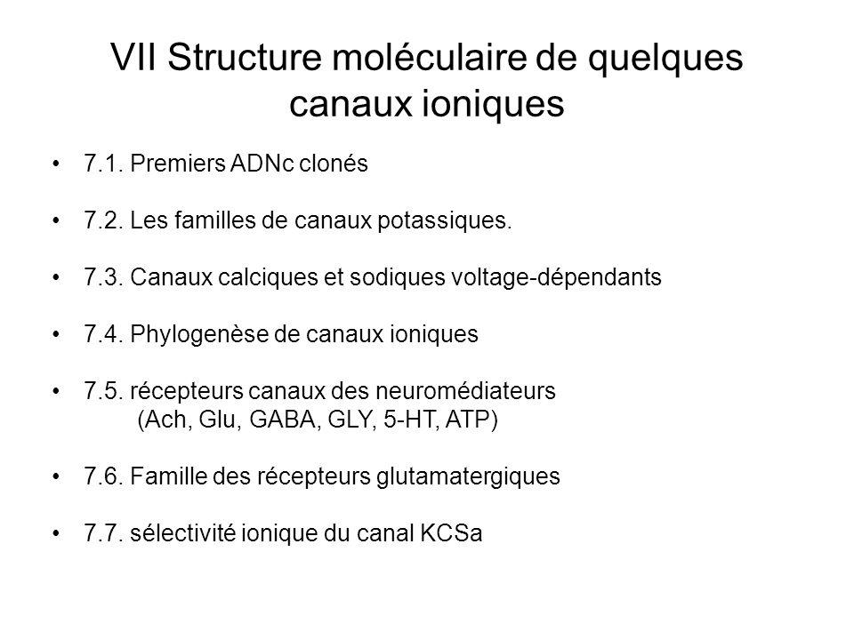 VII Structure moléculaire de quelques canaux ioniques