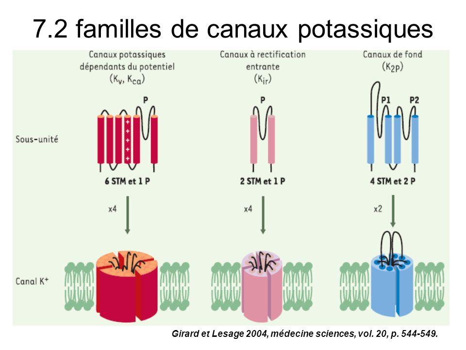 7.2 familles de canaux potassiques