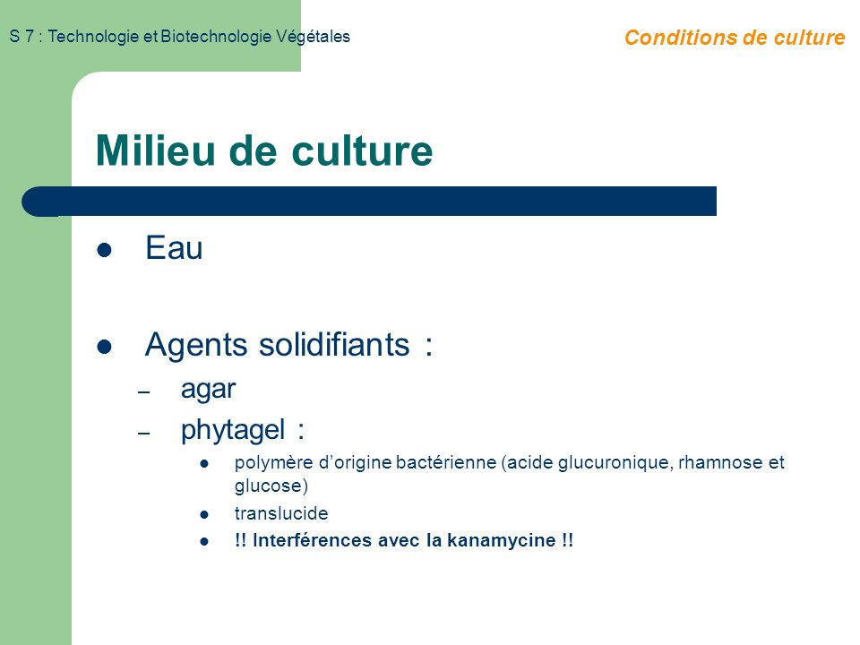 Milieu de culture Eau Agents solidifiants : agar phytagel :