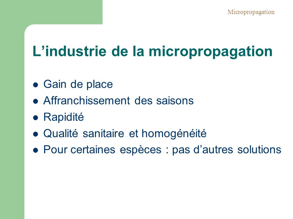 L'industrie de la micropropagation