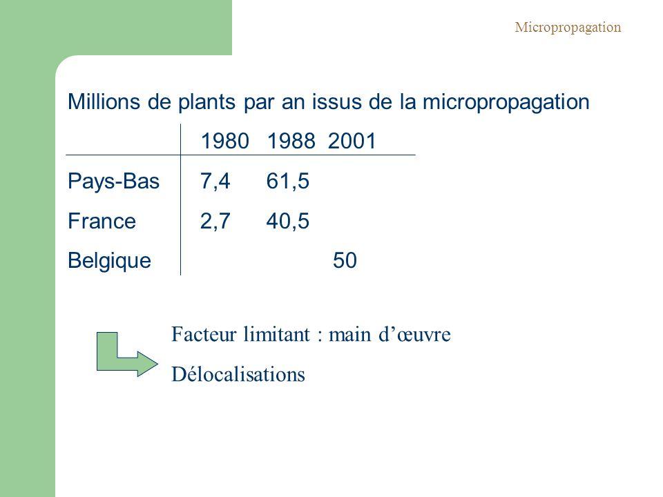 Millions de plants par an issus de la micropropagation 1980 1988 2001
