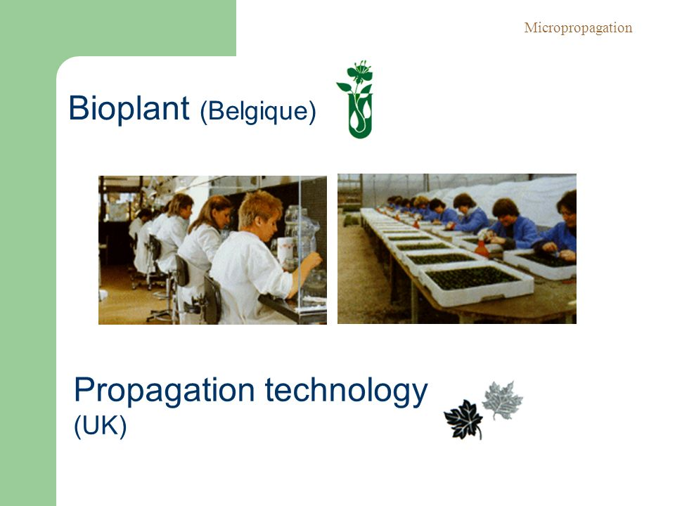Propagation technology (UK)