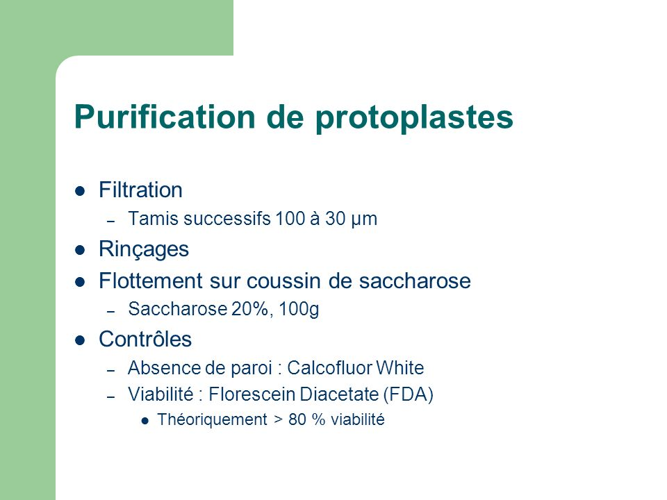 Purification de protoplastes