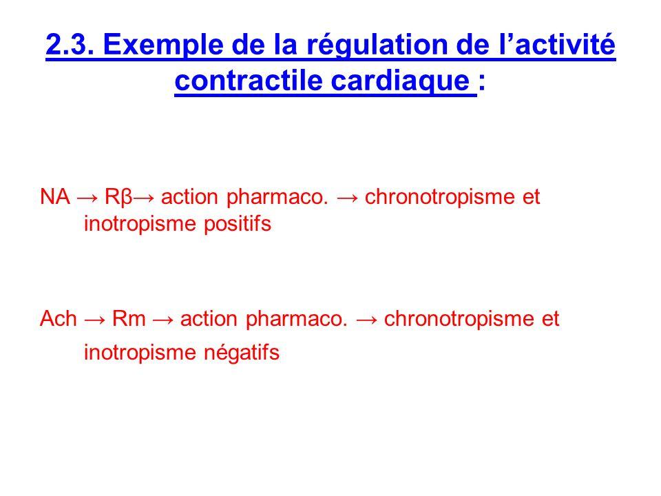 2.3. Exemple de la régulation de l'activité contractile cardiaque :