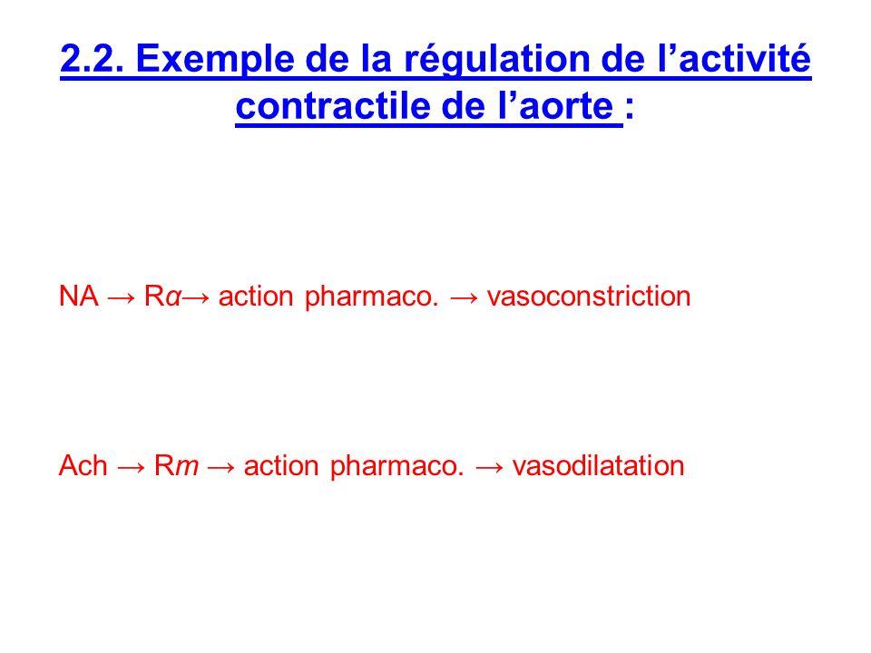 2.2. Exemple de la régulation de l'activité contractile de l'aorte :