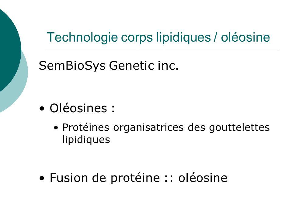 Technologie corps lipidiques / oléosine