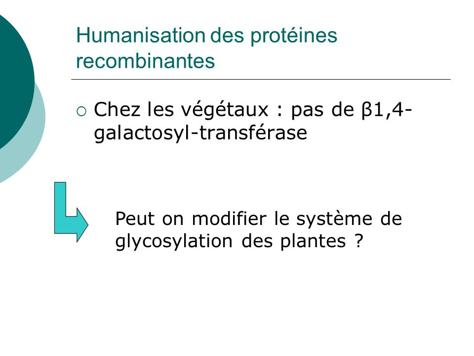 Humanisation des protéines recombinantes