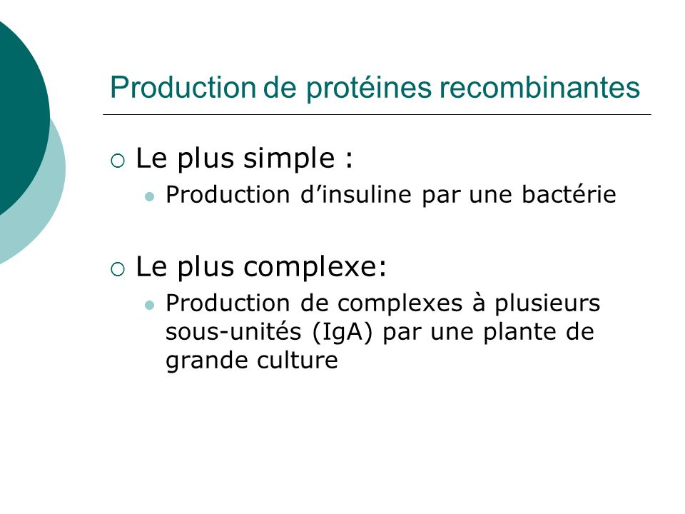 Production de protéines recombinantes