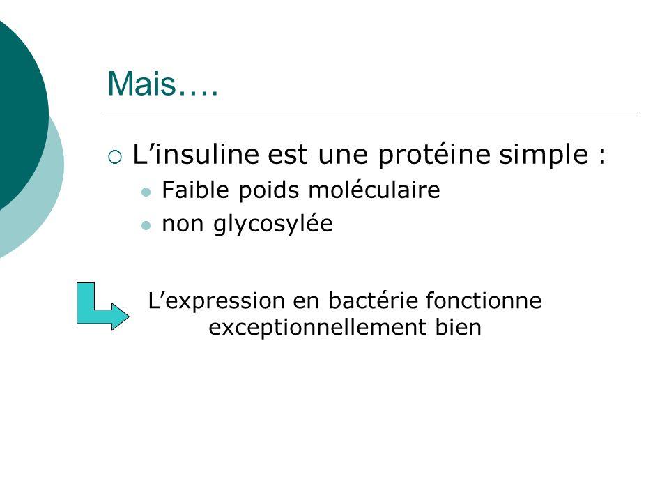 L'expression en bactérie fonctionne exceptionnellement bien