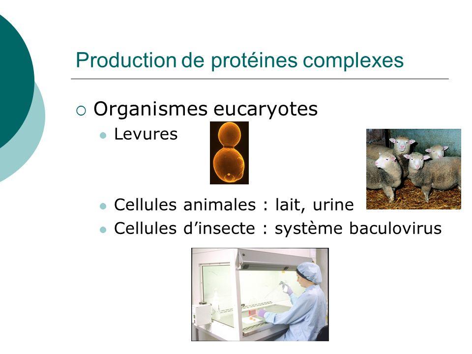 Production de protéines complexes