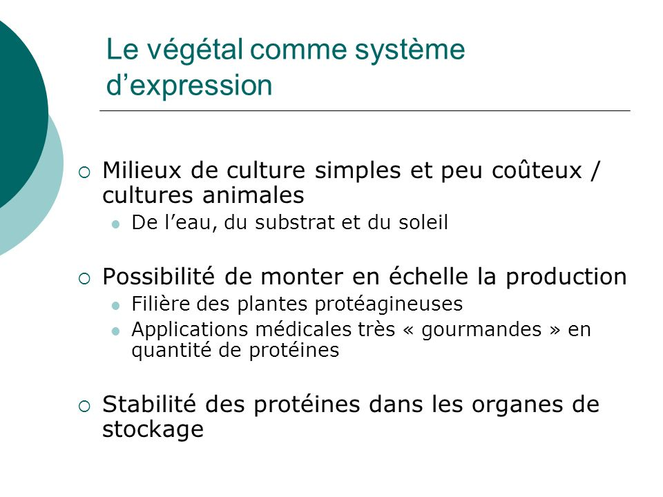 Le végétal comme système d'expression