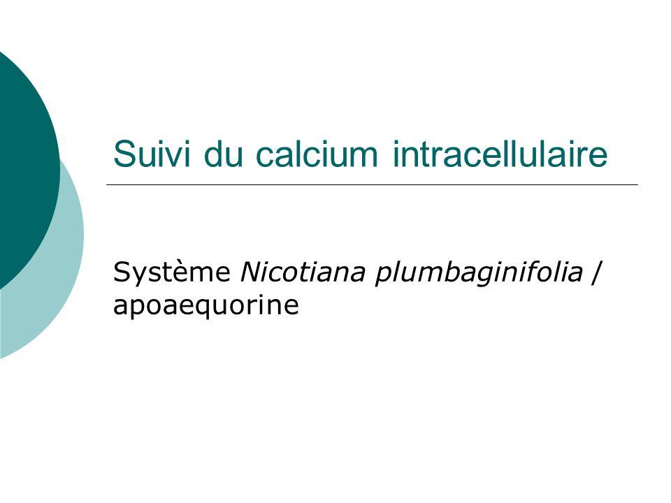 Suivi du calcium intracellulaire