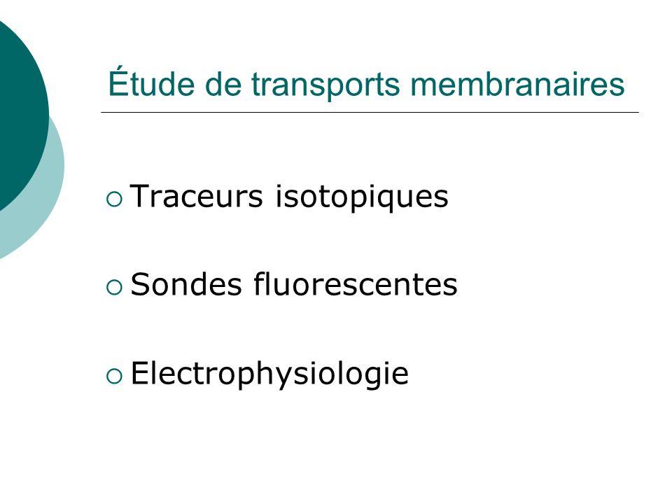 Étude de transports membranaires