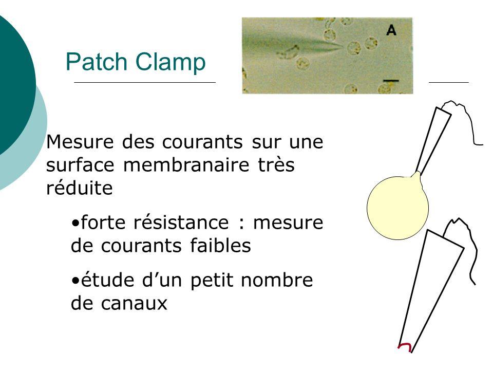 Patch Clamp Mesure des courants sur une surface membranaire très réduite. forte résistance : mesure de courants faibles.