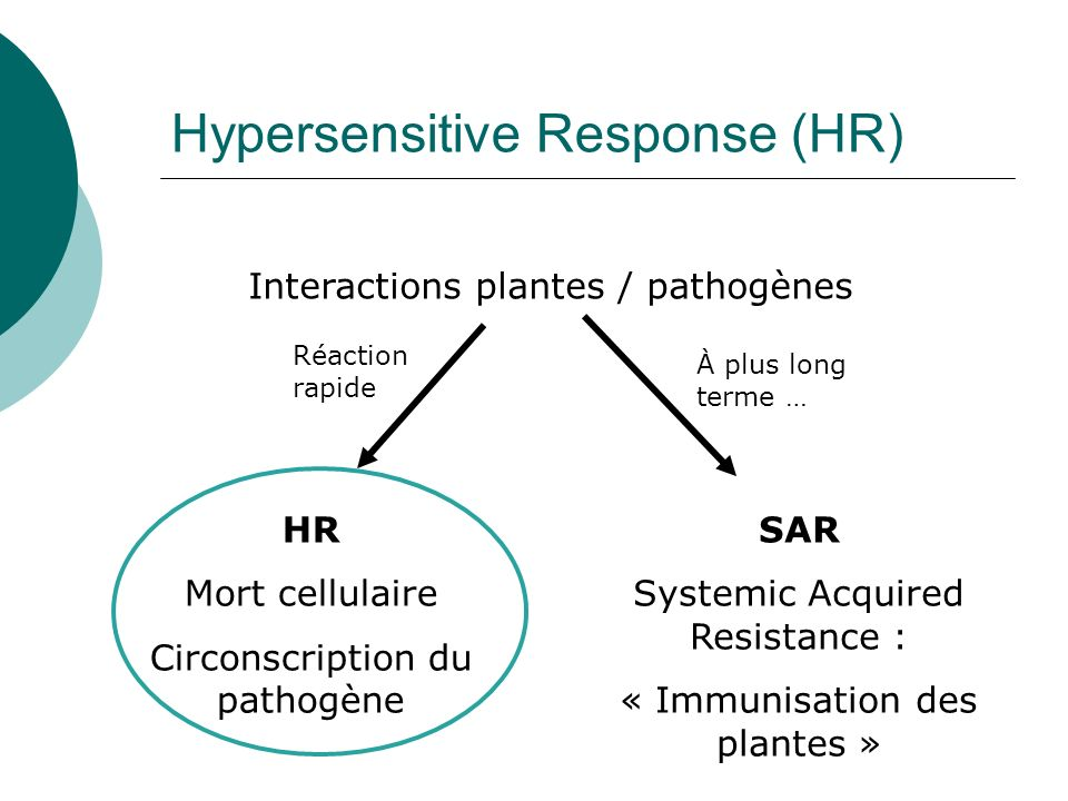 Hypersensitive Response (HR)