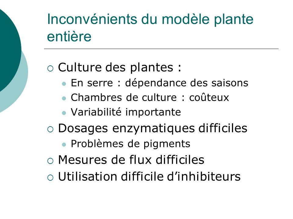 Inconvénients du modèle plante entière