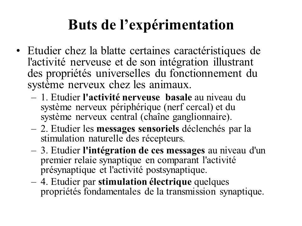Buts de l'expérimentation