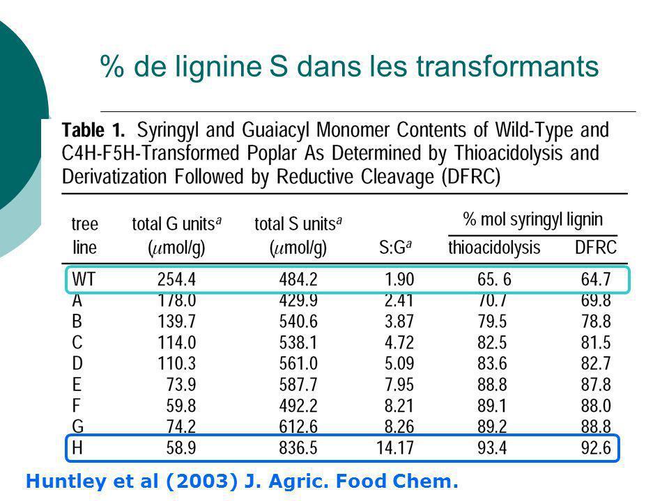 % de lignine S dans les transformants