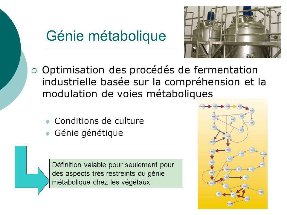 Génie métabolique Optimisation des procédés de fermentation industrielle basée sur la compréhension et la modulation de voies métaboliques.