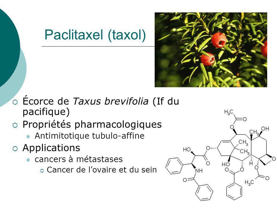 Paclitaxel (taxol) Écorce de Taxus brevifolia (If du pacifique)