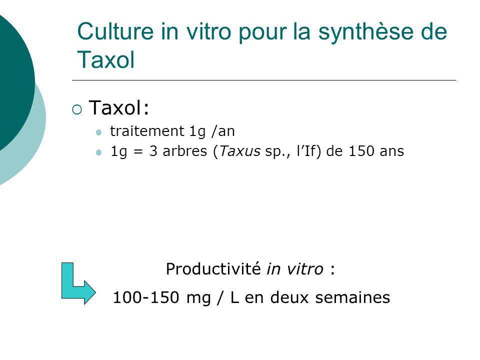 Culture in vitro pour la synthèse de Taxol